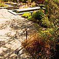 Client_garden_01_6238_blog