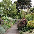 Bloomtown_front_garden_5473_blog