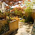 Client_garden_01_6237_blog