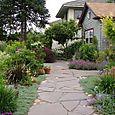 Bloomtown - front garden