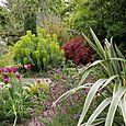 Bloomtown_front_garden_4699_blog