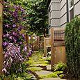 Client_garden_03_6188_blog