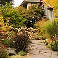 Bloomtown_fall_2006_0599_blog