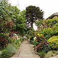 Bloomtown_front_garden_9685_blog