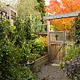 Bloomtown Kitchen Garden_4279