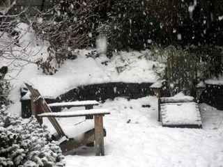 Christmas-Day-Snow_4314