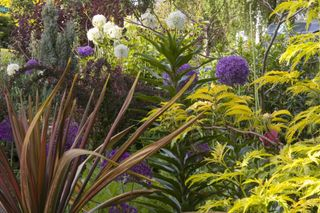 Bloomtown-front-garden_1832