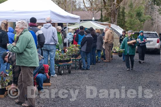 NW Garden Nursery Open Day-9246