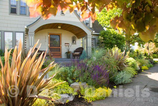 Client front yard garden-9092