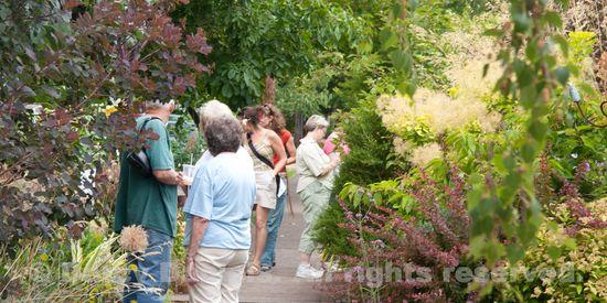 People in my front garden-3394