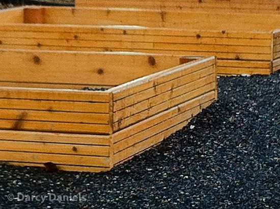 Raised bed with linear detail-4017