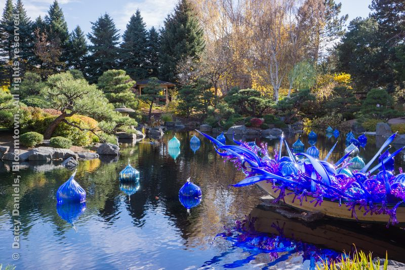Chihuly-DBA-00963