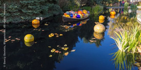 Chihuly-DBA-00948