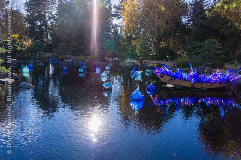 Chihuly-DBA-00961