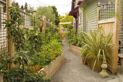 Bloomtown_kitchen_garden_9931_blog_1