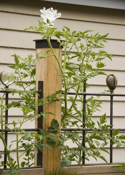 Bloomtown_kitchen_garden_trellis_detail__2